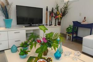 Praia Juquehy - Condomínio Raízes